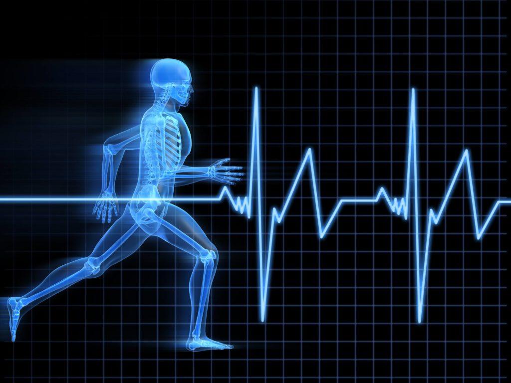 HRV heart rate variability
